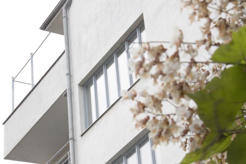 Konsum Building, Dessau