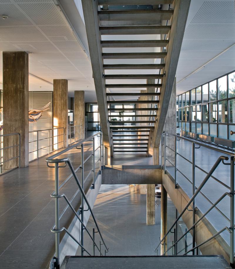 Hochschule Ulm: Prägend für die zwei 100 m langen, versetzt hintereinanderliegenden riegelartigen Baukörper sind die großzügigen einbündigen Erschließungszonen mit offenen geradläufigen Treppenanlagen.